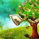 Domain Değeri Nasıl Hesaplanır
