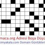 28 Ocak – 03 Şubat Haftası Düşen Domainler