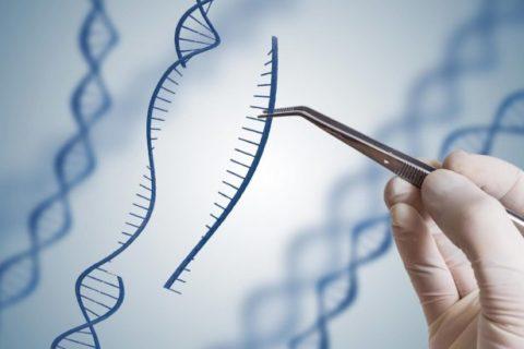 Hangi Durumlarda Embriyolara PGT Yapılmalıdır